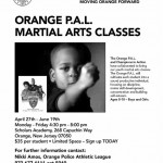 Youth Martial Arts Classes-