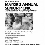 Orange Senior Picnic